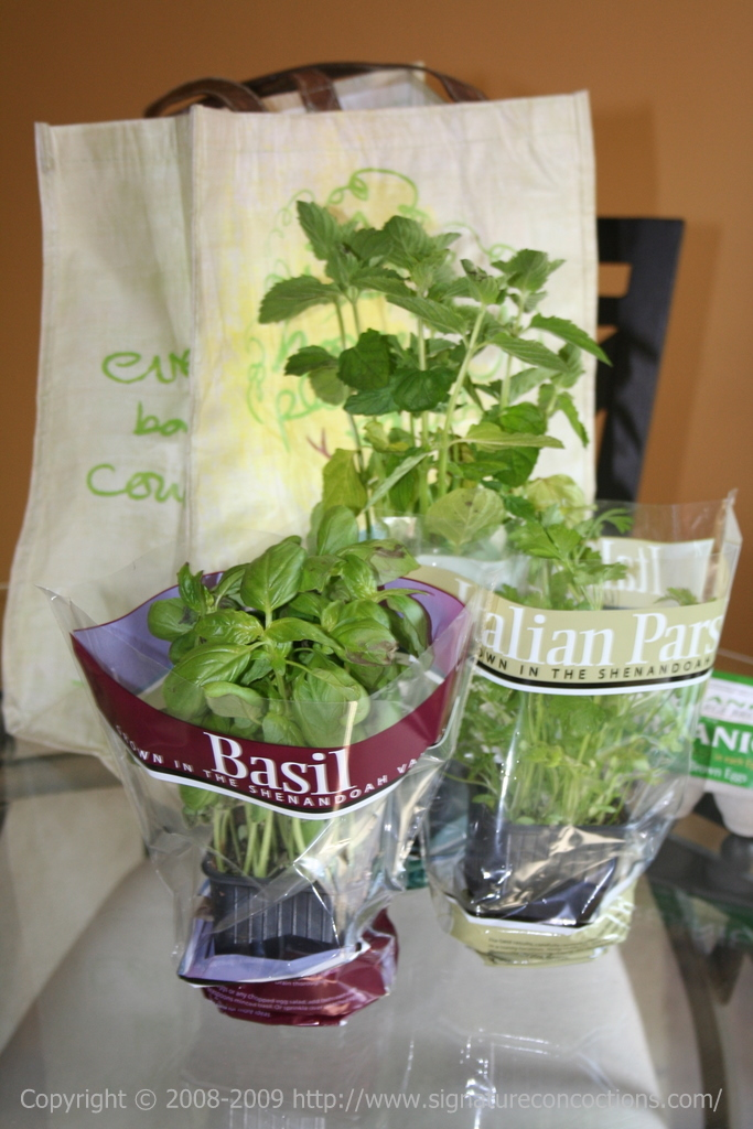 herb pots - basil, parsley and mint